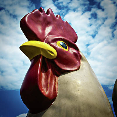 Photograph - Big Chicken by Bud Simpson
