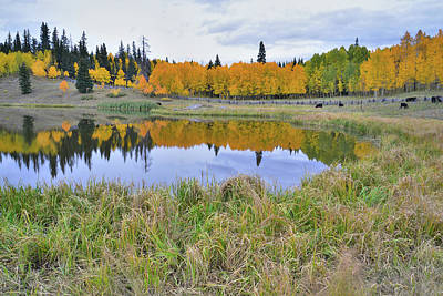 Photograph - Big Cimarron Pond by Ray Mathis