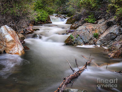 Photograph - Big Cottonwood Creek by Spencer Baugh