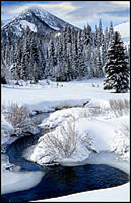 Photograph - Big Cottonwood Creek by Utah Images