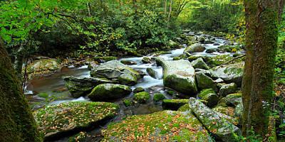 Photograph - Big Creek Bend by Alan Lenk