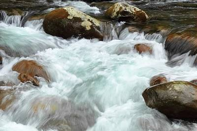 Photograph - Big Creek Overflowing In The Great Smoky Mountains National Park  by Carol Montoya