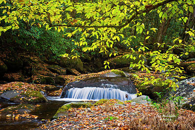 Photograph - Big Creek Waterfall by Peg Runyan