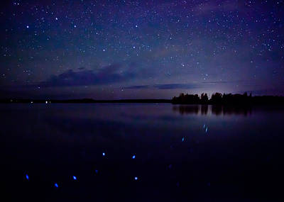 Big Dipper Reflection Art Print by Adam Pender