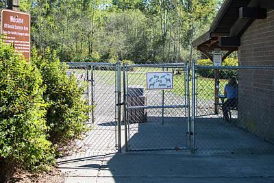 Photograph - Big Dog Park by Tom Cochran