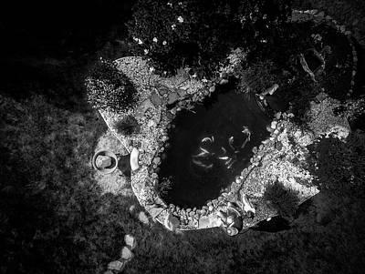 Wall Art - Photograph - Big Fish by Giovanni Arroyo