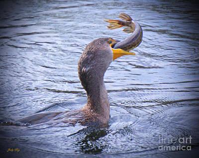 Wild Birds Photograph - Big Gulp by Judy Kay