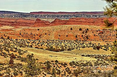 Photograph - Big Horn Slope by Carole Martinez