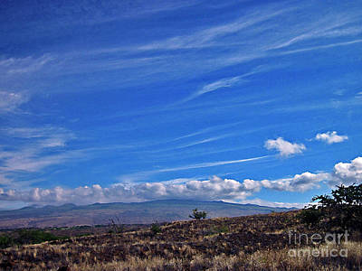 Big Island Landscape 3 Art Print by Bette Phelan