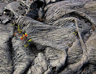Photograph - Big Island Lava Flow by Amelia Racca