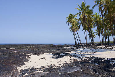 Photograph - Big Island Paradise by Kelley King