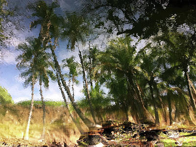 Photograph - Big Island Reflections by Art Shimamura
