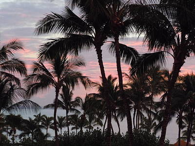 Photograph - Big Island Sunset 2 by Karen J Shine