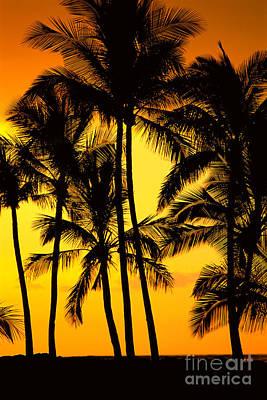 Big Island, View Art Print by Greg Vaughn - Printscapes