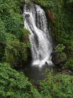 Photograph - Akaka Waterfall by John Bushnell