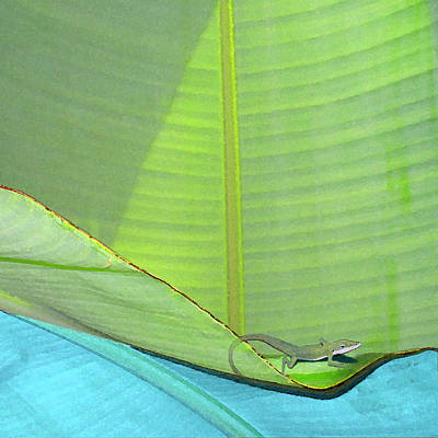 Digital Art - Big Leaves With Lizard by Karen Dyson