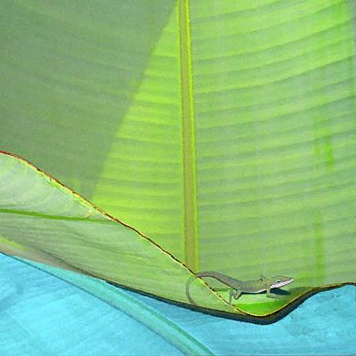 Digital Art - Big Leaves With Lizard by Karen Dyson