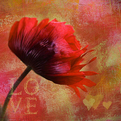 Photograph - Big Love by Annie Snel