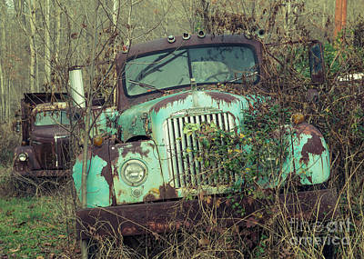 Photograph - Big Mack Daddy by Terry Rowe