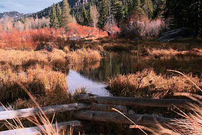 Big Meadow Creek Fall Art Print by Larry Darnell