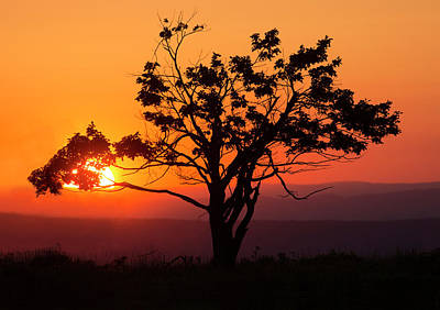 Photograph - Big Meadow Sunset by Art Cole