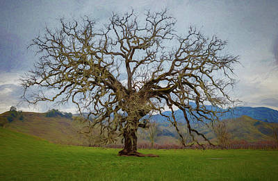 Big Oak Art Print by Mike Penney
