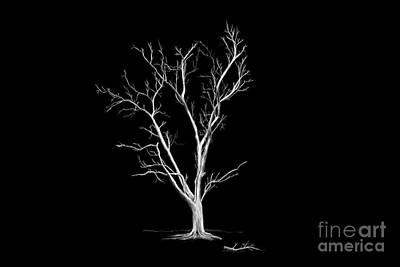 Digital Art - Big Old Leafless Tree by Jan Brons
