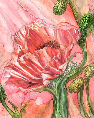 Mixed Media - Big Peach Poppy by Carol Cavalaris