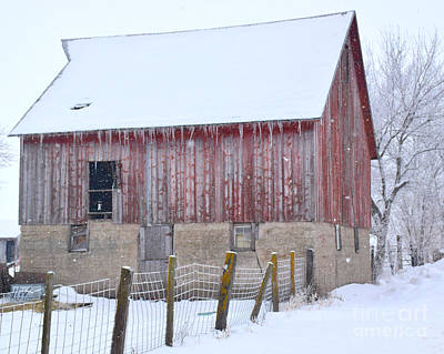 Photograph - Big Red II by Kathy M Krause