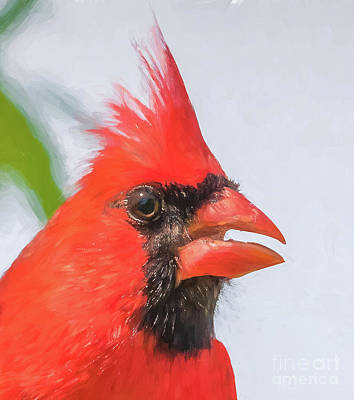 Mixed Media - Big Red by Kim Henderson