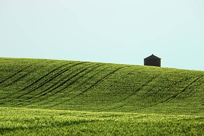Contour Farming Photograph - Big Sag Wheat by Todd Klassy
