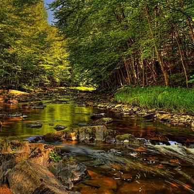 Photograph - Big Sandy Creek Reflection by Dale Kauzlaric