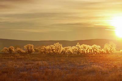 Photograph - Big Sandy Sun by Todd Klassy