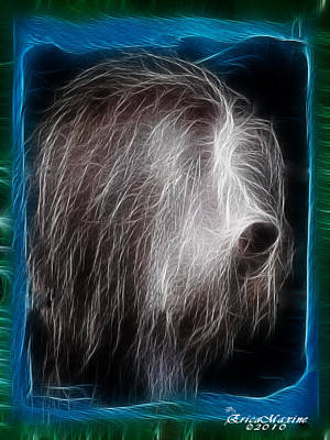 Art Print featuring the photograph Big Shaggy Dog by EricaMaxine  Price