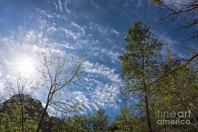 Photograph - Big Sky by Peggy Hughes