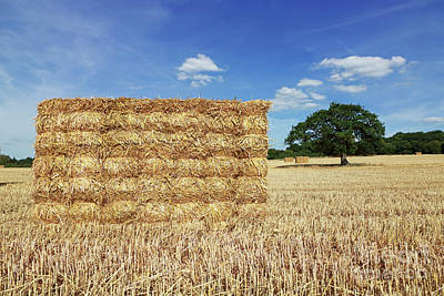 Photograph - Big Straw Bales  by Julia Gavin