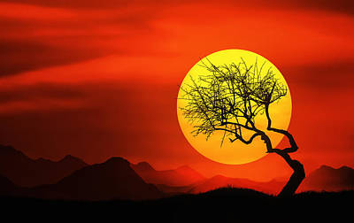 Big Sunset Art Print by Bess Hamiti