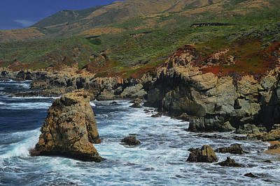 Photograph - Big Sur 1 by Renee Hardison