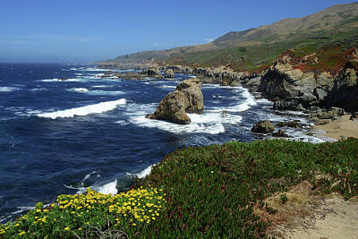 Photograph - Big Sur 2 by Renee Hardison
