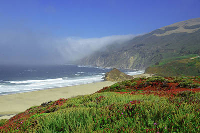 Photograph - Big Sur 3 by Renee Hardison