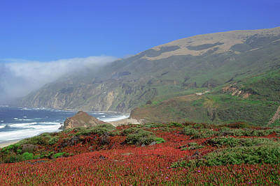 Photograph - Big Sur 4 by Renee Hardison