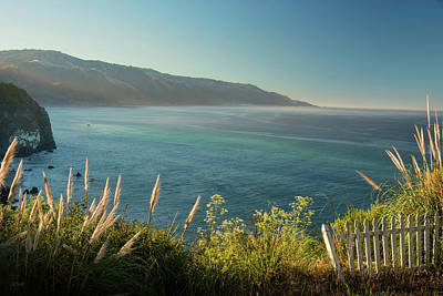 Photograph - Big Sur At Lucia, Ca by Dana Sohr