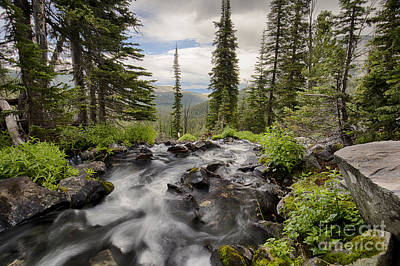 Photograph - Big Swamp Creek by Idaho Scenic Images Linda Lantzy