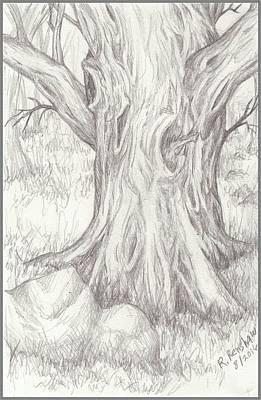 Drawing - Big Tree by Ruth Renshaw