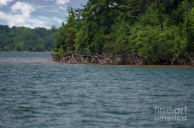 Photograph - Big Water On Lake Hartwell by Dale Powell