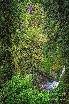 Willison Photograph - Bigfoot Country by Jon Burch Photography
