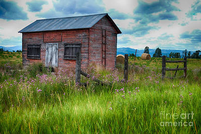 Photograph - Bigfork Farm Shed by Vinnie Oakes