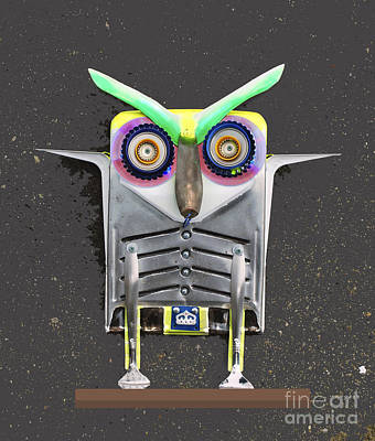 Photograph - Big Eyebrow Owl by Bill Thomson