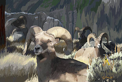 Wall Art - Digital Art - Bighorn Boys by Pam Little