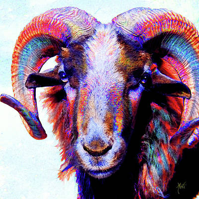 Mixed Media - Bighorn Ram Sheep by Michele Avanti